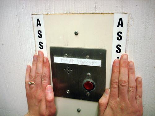 Ass Ass