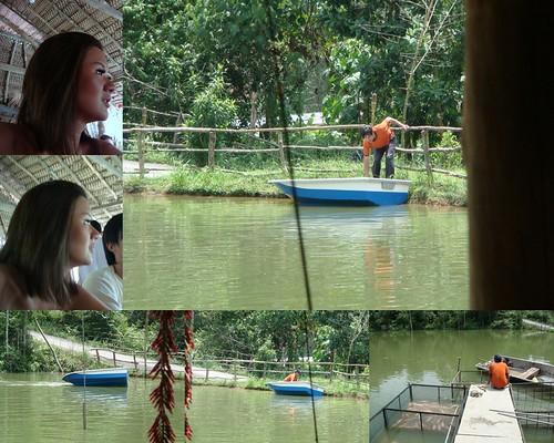 Vegi & Fish Farm