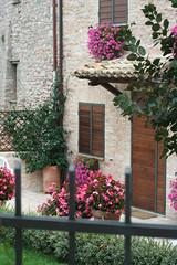 San Giovanni Umbria_7699
