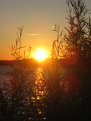 Presque Isle (Erie Bay) Sunrise (kjimbo) Tags: birding westernpennsylvania thegalaxy 100commentgroup mygearandmepremium mygearandmebronze mygearandmesilver mygearandmesilverselection mygearandmegold mygearandmeplatinum flickrstruereflection1 rememberthatmomentlevel1 magicmomentsinyourlife magicmomentsinyourlifelevel2 rememberthatmomentlevel2 magicmomentsinyourlifelevel3 magicmomentsinyourlifelevel4