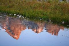 Schwabacher Landing Sunrise Reflection (wanderingYew2) Tags: morning mountain reflection nationalpark rockymountains wyoming jacksonhole grandtetonnationalpark greateryellowstoneecosystem