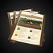 Wine Club Email Newsletter Design For Diamond Ridge Market
