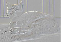 micio ringhiera (poliantea) Tags: grigio luisa gatto micio voltan bassorilievo elaborazione luisavoltan