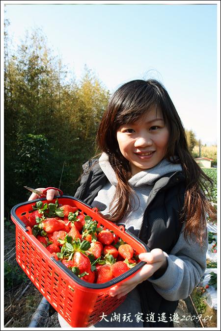 090117_10_採草莓