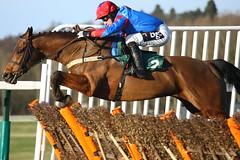 Tony McCoy on Kilbeggan Blade (ryan marsh) Tags: horse canon racing horseracing mccoy towcester towcesterraces tonymccoy 40d petersalmon championjockey kilbegganblade