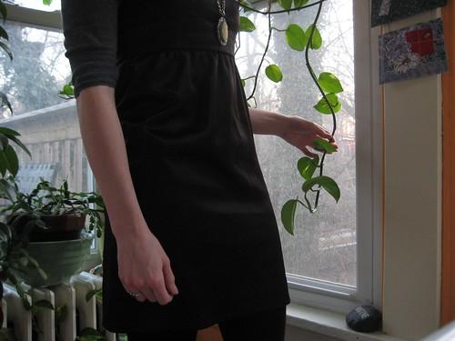 02-12 plant