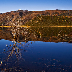 china obscura (millan p. rible) Tags: china blue mountain reflection tree nature water landscape interestingness scenery scene shangrila clear explore yunnan province cpl circularpolarizer obscura canoneos5d canonef24105mmf4lisusm yunnanprovince potatsonationalpark millanprible millanrible chinaobscura