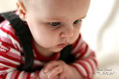 Ensorcele (Roxynette) Tags: baby girl eyes yeux fille bb canon50mmf14 simonne roxynette roxanelarouche