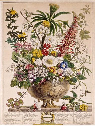 012- Diciembre- Los doce meses del año en flores