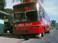 Royal Eagle (Chkz) Tags: santa red bus nissan eagle diesel royal rosa sr pne 194 408  akr pe6  rb31 chokz2go