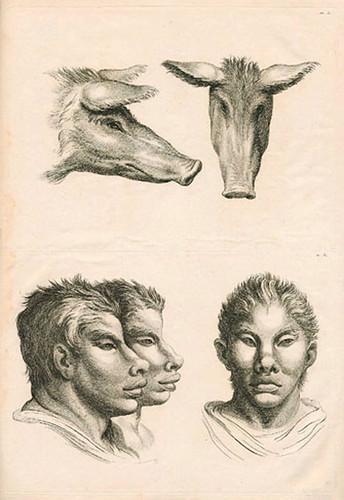 022-Le Système de Lebrun sur la Physionomie 1806