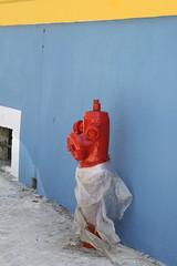 Casual dresser (Photocapy) Tags: blue red rot portugal fashion yellow azul hydrant rojo vermelho bleu amarillo firehydrant geel rood brandkraan baluw lschwasserversorgung