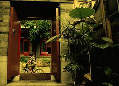 Courtyard restaurant, Beijing (ShanLuPhoto) Tags: china door bike bicycle restaurant gate beijing courtyard  loolooimage