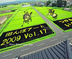 Rice Field Art.  (Hirosaki Japan).  Glenn Waters. Over 6,000 visits to this image. Thank you. (Glenn Waters in Japan.) Tags: road street roof horse art japan nikon paddy action explore aomori sword napoleon warrior samurai katana 2009  bushi    explored  inakadate d700 nikond700  glennwaters riceart  ricefieldart