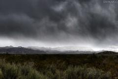 Ante la peor tormenta... (Darkaico) Tags: ariel lluvia pasto mendoza cielo nubes tormenta sanrafael hdr montaas darkaico