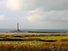 Evening pastoral (Max []) Tags: ocean sea sunlight lighthouse france beach delete9 delete5 delete2 afternoon cows cloudy delete6 delete7 delete8 delete3 delete delete4 save save2 fields normandie stonewalls
