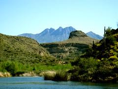 Four Peaks (azgulch) Tags: lake greenery saguaro sonorandesert fourpeaks naturepeople worldwidelandscapes panoramafotogrfico