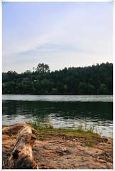 Near the riverbank (apnaf) Tags: wood blue sky verde green portugal water rio água azul river céu porto edge tronco madeira riodouro d300 margem 18200mm flickraward ilustrarportugal landscapesdreams
