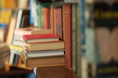 Used books (halifaxlight) Tags: old canada cafe novascotia bokeh books colourful shelves stacks mahonebay platinumheartaward ilovemypics