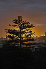 sunset over sydney (jiggy!) Tags: sunset manly sydney urvision