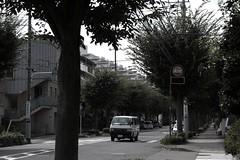 町田樹 画像51