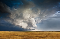 (Laura Travels) Tags: storm weather clouds midwest searchthebest ominous farmland kansas plains plain summer09