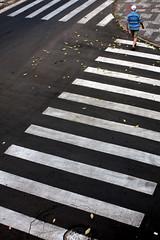 Pedestre (Sionelly Leite) Tags: paran brasil centro pr rua asfalto trnsito senhor londrina trfego faixadepedestres sionelly atravessandoarua