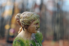 (Nicole Lungaro) Tags: statue stone moss green ray hair woman profile fall autumn outside trees orange brown yellow sunlight spots bokeh armless luna parc nj nikon d40x