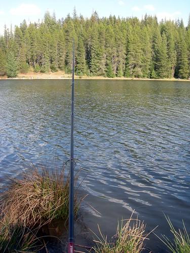 moose creek16
