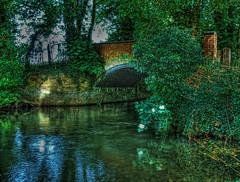 The Bridge (Roamer 57 (Not Around Much)) Tags: bridge trees nature water stream theworldwelivein tonemapped nikond80 roamer57 magicunicornverybest magicunicornmasterpiece galleryoffantasticshots