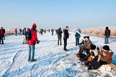 090110Molentocht9315 (richardvanhoek) Tags: nederland molentocht ijs schaatsen vorst winterweer vriezen schaatstocht winterijspret