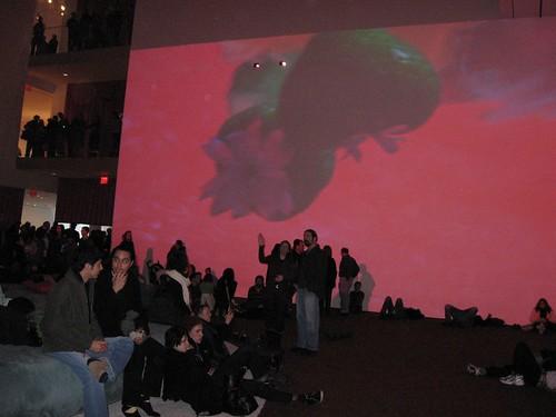 IMG_9526 Pipilotti Rist at MoMA