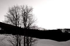snow walk (kubse) Tags: winter snow salzburg countryside rauris pinzgau