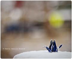 Got Crane? (cherryvanillastudios) Tags: bokeh milkcarton 50mmf18 origamicrane hbw