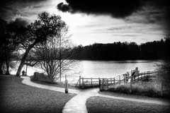 Hillsborough Lake (Etrusia UK) Tags: uk trees sky blackandwhite water clouds landscapes nikon unitedkingdom wideangle northernireland paths ni wmp pictureperfect ulster d300 nikkorlens 18200mm nikonlens vrlens nikon18200mm nikkor18200mmvr nikkor18200mm nikon18200mmvr 18200mmlens nikond300 awesomepictureaward