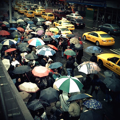 """Umbrella party"" (Sion Fullana) Tags: urban newyork primavera rain spring lluvia chaos traffic broadway streetphotography taxis timessquare urbanjungle umbrellas paraguas camerabag allrightsreserved chaotic iphone 500x500 peoplewalking yellowcabs therain yellowtaxis urbanshots abigfave unusualseasons rainynewyork newyorktaxis iphonephotography iphoneshots sionfullana winner500 umbrellaparty sionfullanasphotography iphoneography iphoneographer sionfullana tktsstairs helgastyle lotsofumbrellas 1galleries throughthelensofaniphone"