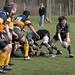 Rugby Testspiel USV Jena vs SSV Erfurt