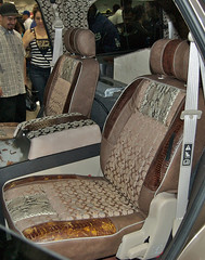 Coach Interior w/ Snakeskin @ DUB Show 2009 in LA (Eleets121 | ryanmsteele.com) Tags: auto show hinge girls detail car leather 30 photoshop magazine la losangeles coach amazing concert nikon inch paint tour ride candy 26 suicide tire chrome whip conventioncenter gloss 28 dslr custom expensive rims filthy sick lowrider 2009 dub matte airbrush snakeskin showcar cs3 apholstery d40 inteior eleets ryanmsteele