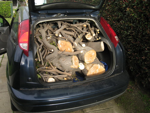 Victorian Box wood in back of 2000 Ford Focus hatchback
