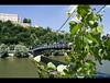 Hängebrücke (mcPhotoArts™) Tags: bridge river germany bayern deutschland bavaria brücke fluss passau niederbayern hängebrücke geotagging hangingbridge ilz canoneos400d luitpoldbrücke sigma1770mm2845dcmacro ©bumblebeephotografix alteveste