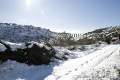 IMG_8072 (Miguel Angel Mora (GSi_PoweR)) Tags: espaa snow andaluca carretera nieve nevada sunday bosque granada costadelsol domingo maroma mlaga mountainroad meteorologa axarqua puertomontaa zafarraya sierraalmijara caosalcaiceria