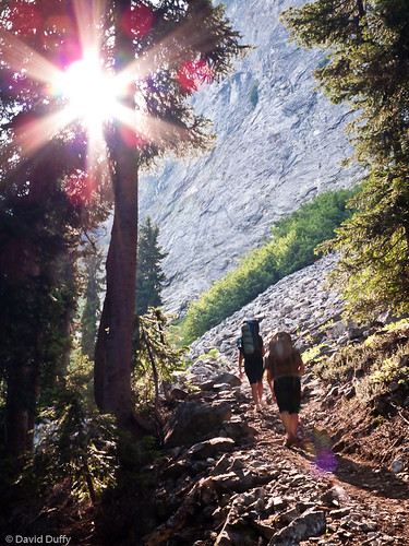 Spider Glacier trail