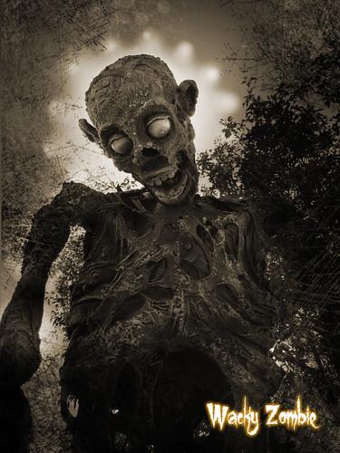 Wacky Zombie