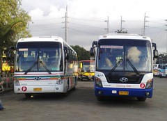 Cagsawa vs. Isarog (Api II =)) Tags: city bus coach space philippines transport center terminal line u1 sur express universe hyundai tours luxury cubao inc noble naga cagsawa araneta 8881 camarines isarog