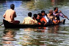 playing with life (Rebinson) Tags: life people india race river boat risk culture kerala drunken waters kochi ernakulam viewers manwork utsavam vallamkali rebin jalolsavam