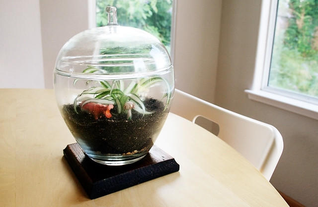 Thrifty Crafting Terrarium Inspiration Little Big