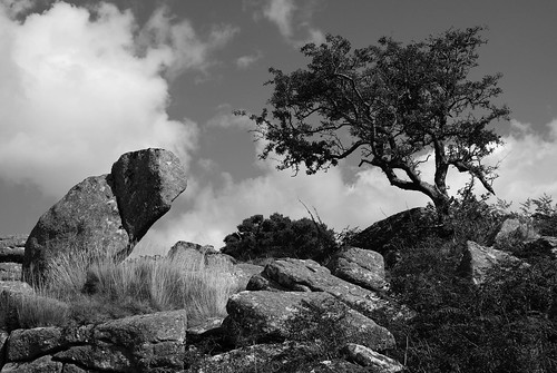 Hayne Down, Dartmoor.