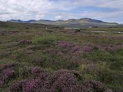 Isla de Skye (Rubn Hoya) Tags: uk lake mountains skye lago island scotland united kingdom paisaje escocia gran loch isla montaas reino unido bretaa scotlanda brezolandscape