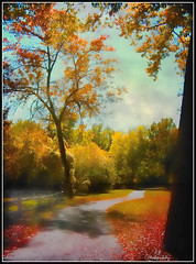 The Autumnal Way (jackaloha2) Tags: trees fall texture clouds photoshop canon fence way path changing greens vegetation layers yellows reds legacy autumnal tistheseason coth abigfave platinumphoto anawesomeshot texturedlayers absolutelystunningscapes awardtree topazadjust dragondaggerphoto canoneosdigitalxsi miasbest miasexcellence daarklands legacyexcellence flickrvault magicunicornverybest selectbestfavorites flickrvaultexcellence trolledproud daarklandsexcellence newgoldenseal