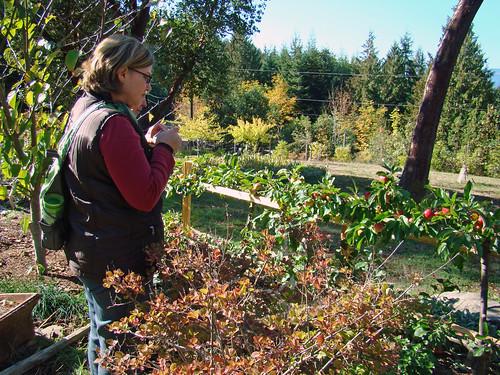 2009-10-04 Salt Spring Island 068